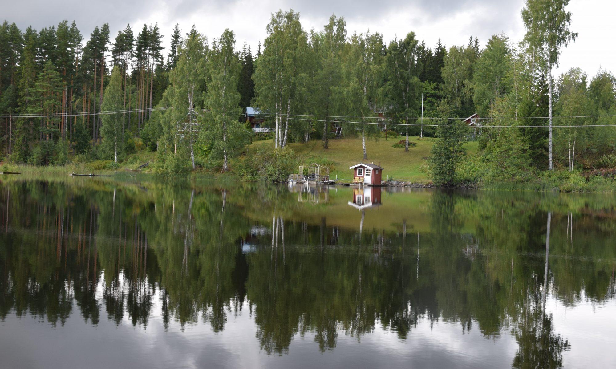 Svensk förening för obesitasforskning